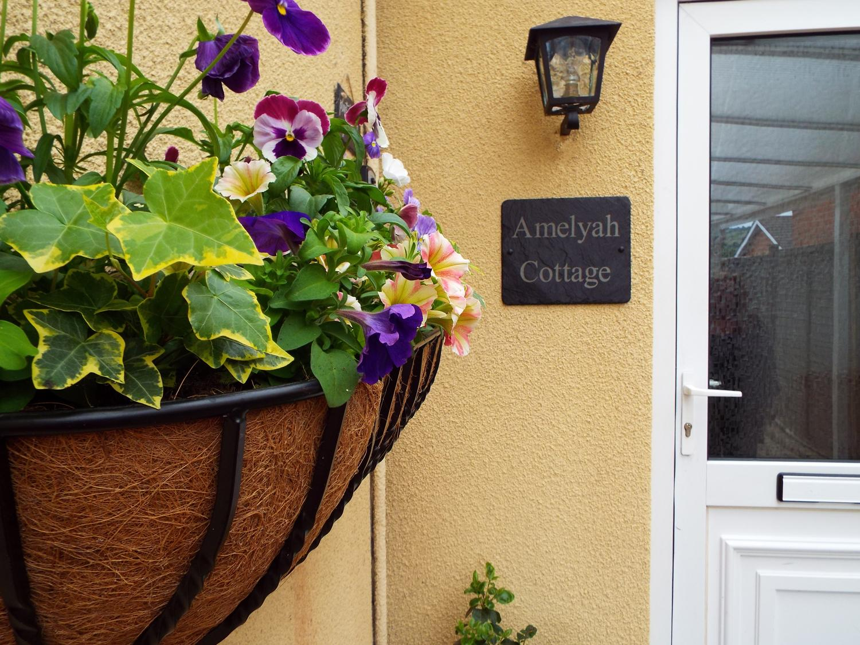 Amelyah Cottage
